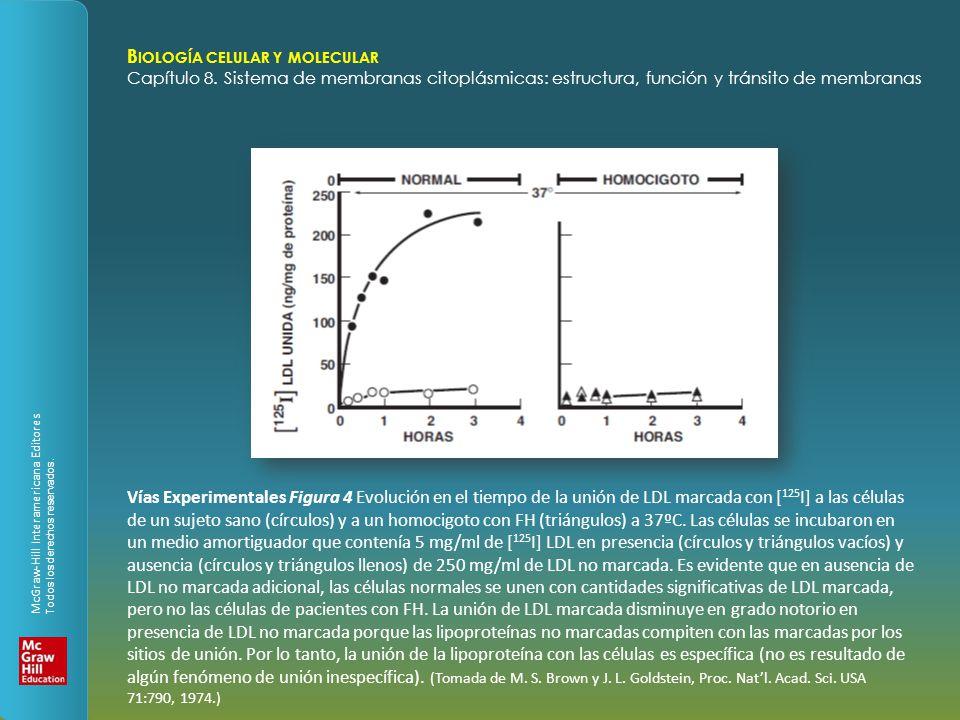 Capítulo 8 Sistema de membranas citoplásmicas: estructura, función y ...